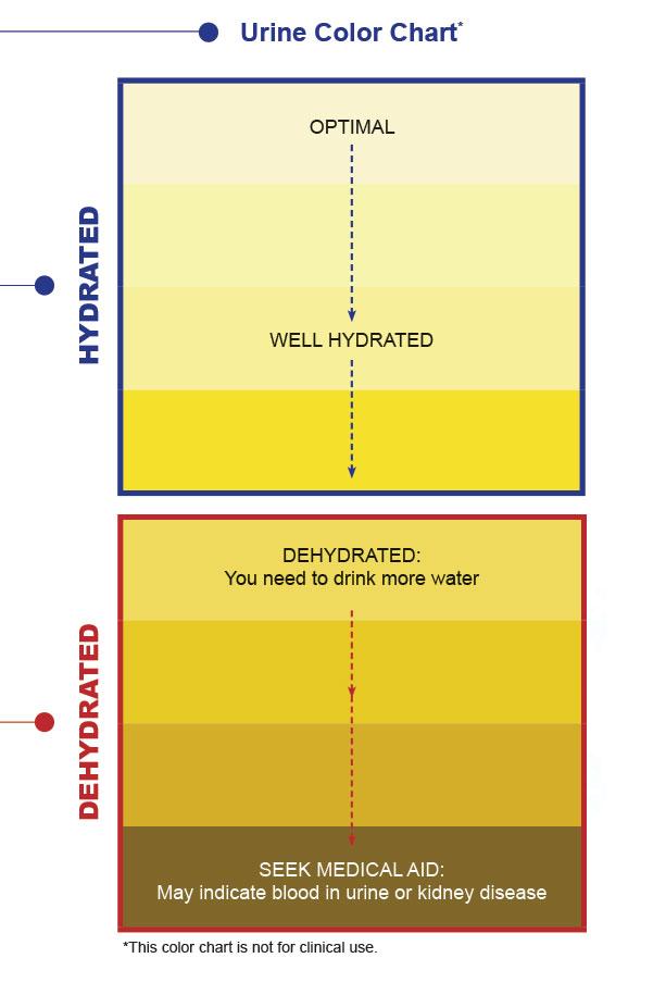 Urine-Color